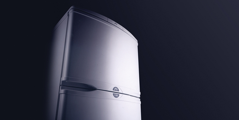 Domestic appliances simplifying life